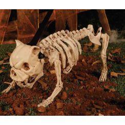 Cane scheletro con luci suoni  e movimento 40 cm