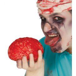 Cervello 15 cm