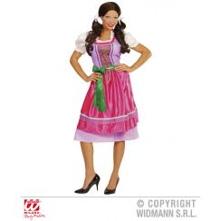 Costume DIRNDL rosa-verde