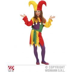 Costume da JOLLY JESTER