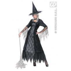 Costume Spiderweb Witch