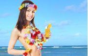 Tema Hawaii